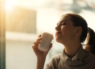 El detox mental y sus beneficios para un impacto positivo en tu vida